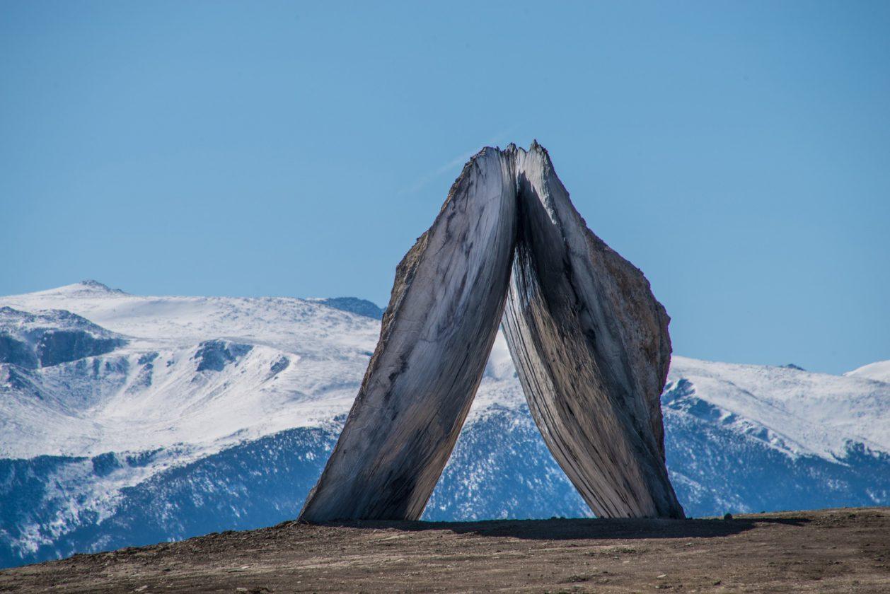 tippet-portail-montana-04