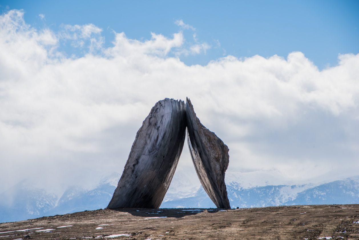 tippet-portail-montana-19