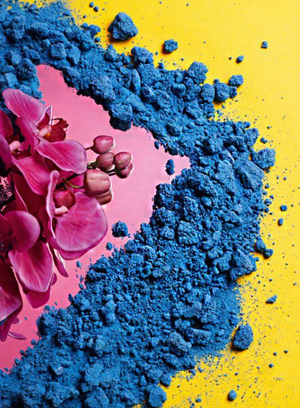 fleurs-poudre-par-bonham-maranon-05