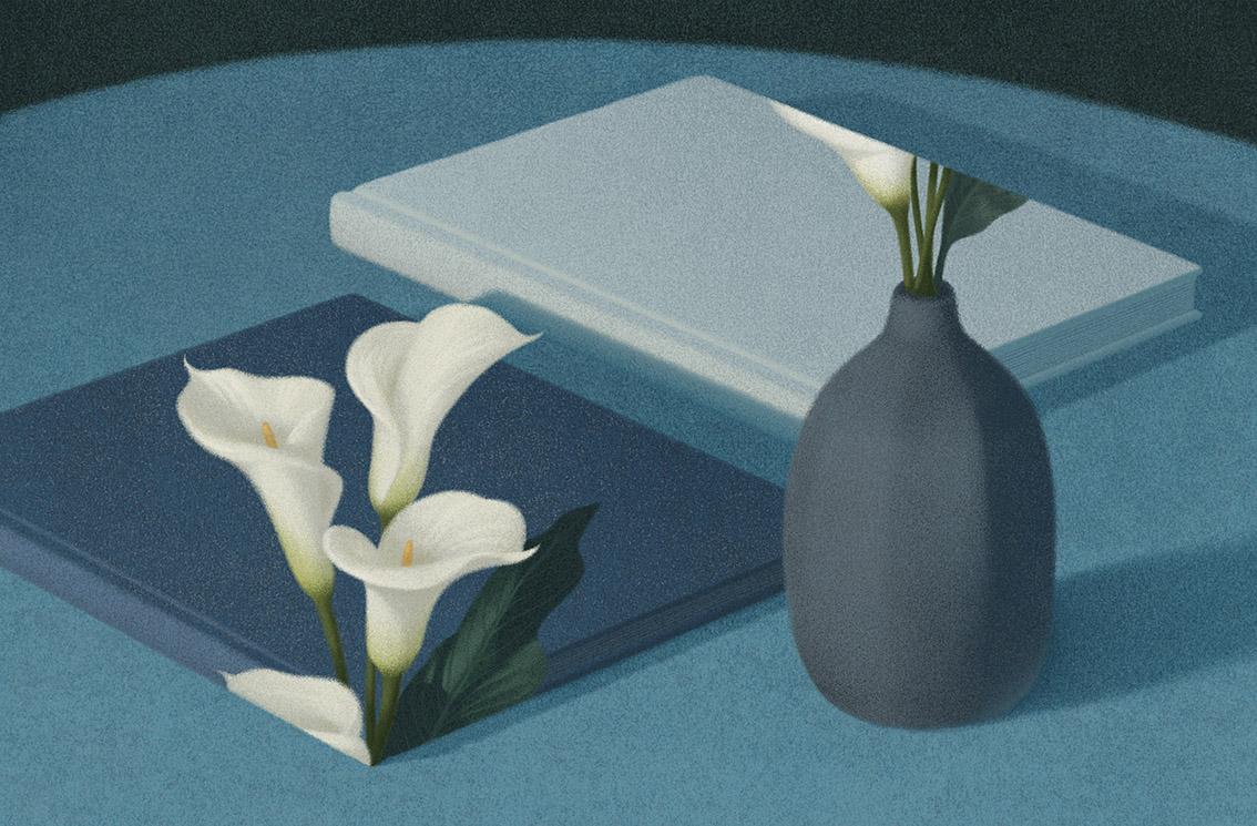 illustration-livre-06