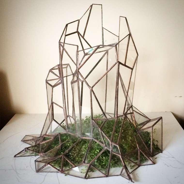 terrarium-plante-02