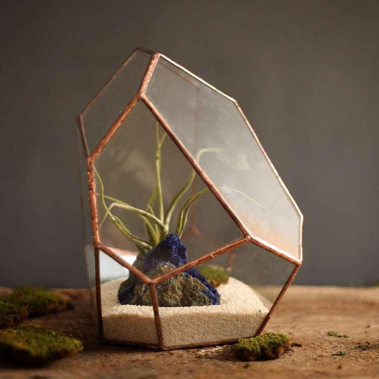 terrarium-plante-04