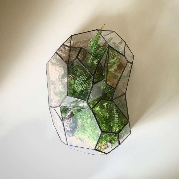 terrarium-plante-07