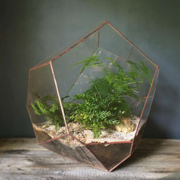 des mini terrariums g om triques pour vos plantes. Black Bedroom Furniture Sets. Home Design Ideas
