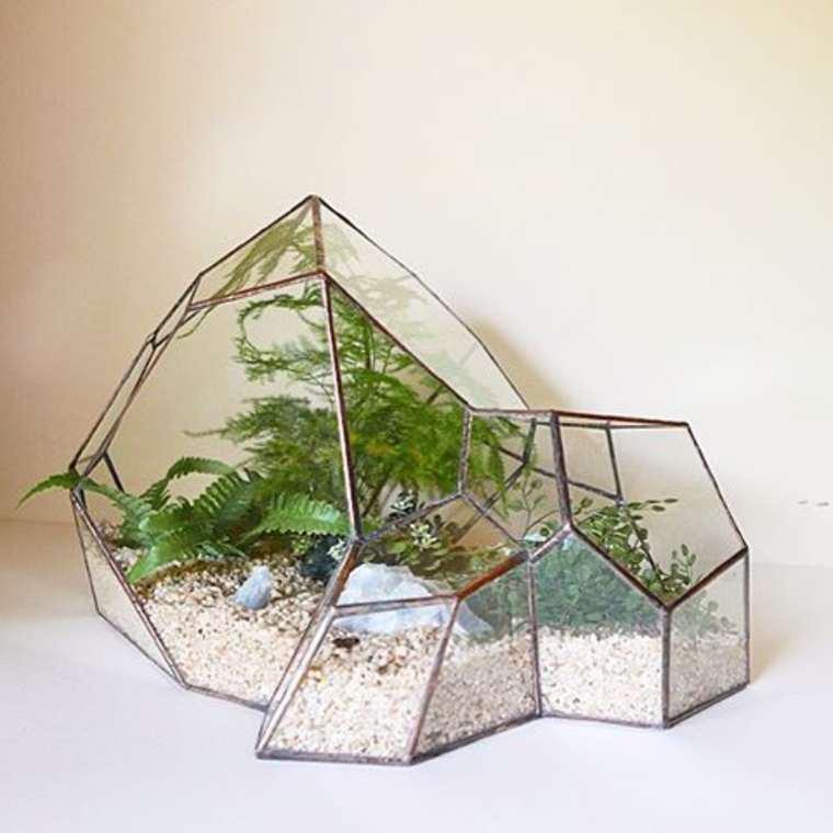 terrarium-plante-11
