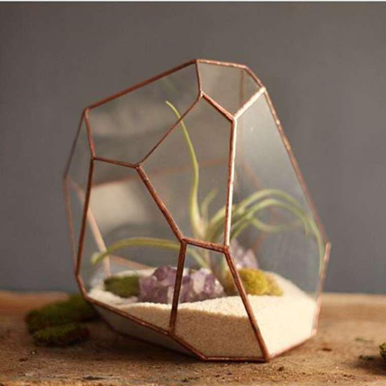 terrarium-plante-13