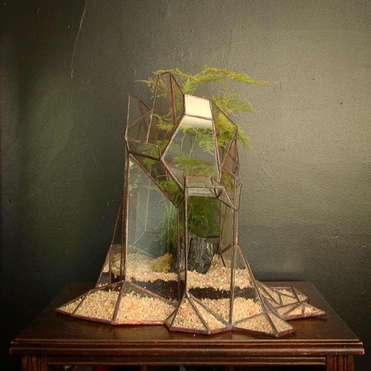 terrarium-plante-14