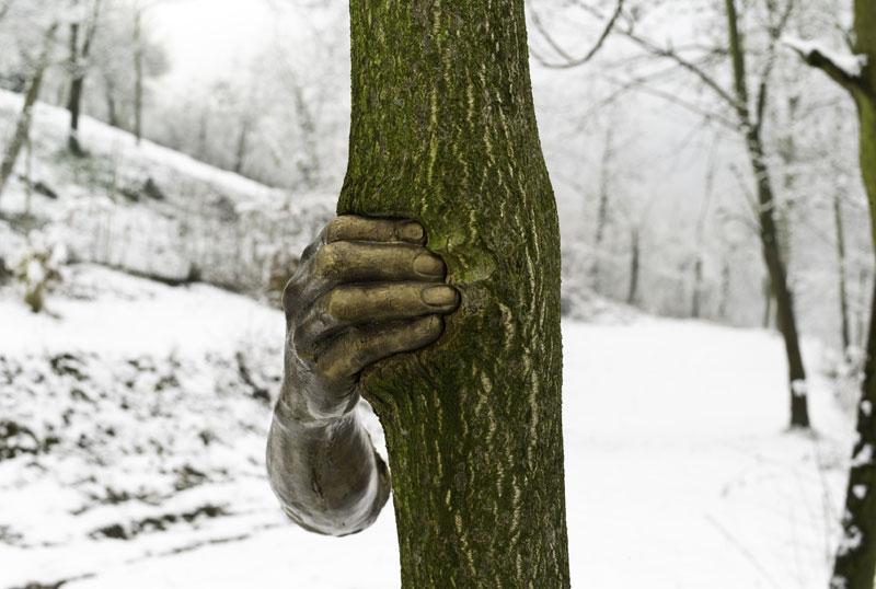 giuseppe-penone-main-arbre-01