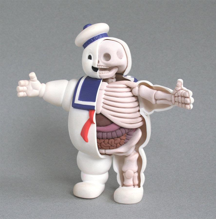 jason-freeny-anatomie-jouet-04