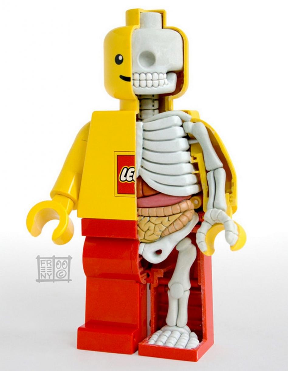 jason-freeny-anatomie-jouet-15
