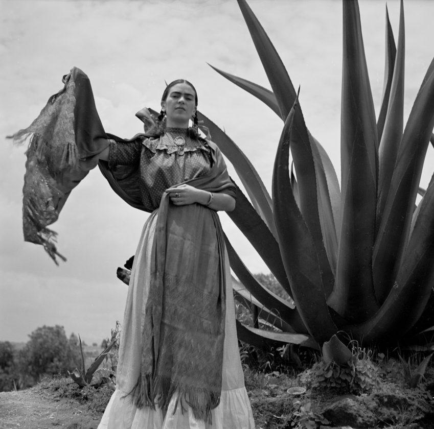 frida-kahlo-mexique-toni-frissel-cactus-01