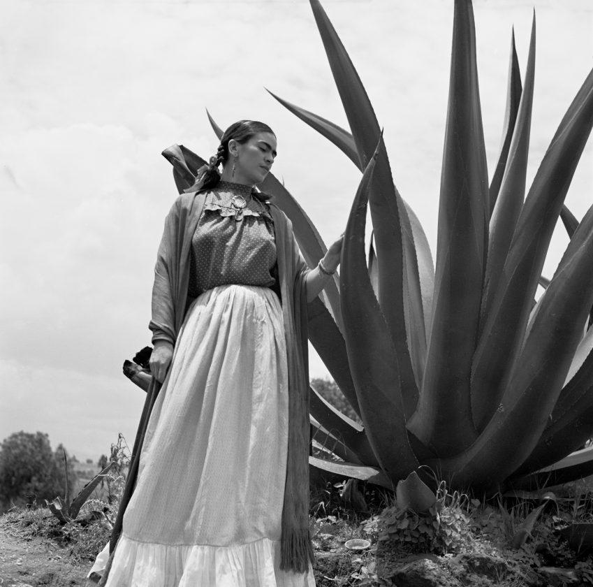frida-kahlo-mexique-toni-frissel-cactus-02