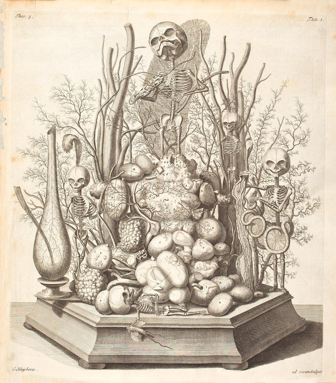 illustration-medicale-biologie-01