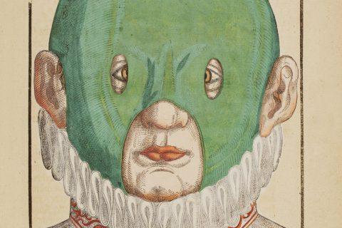 illustration-medicale-biologie-02