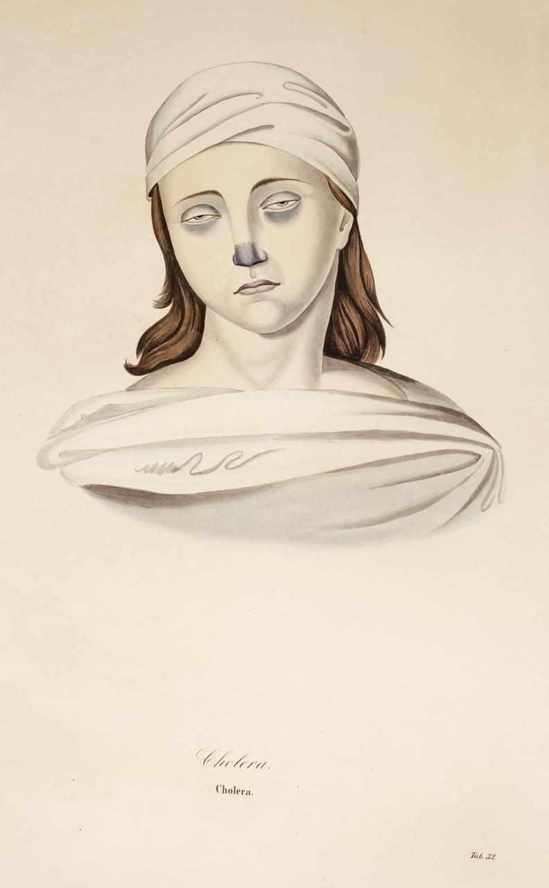 illustration-medicale-biologie-31