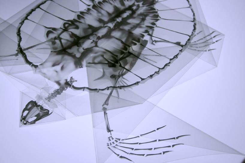 rayonx-origami-04