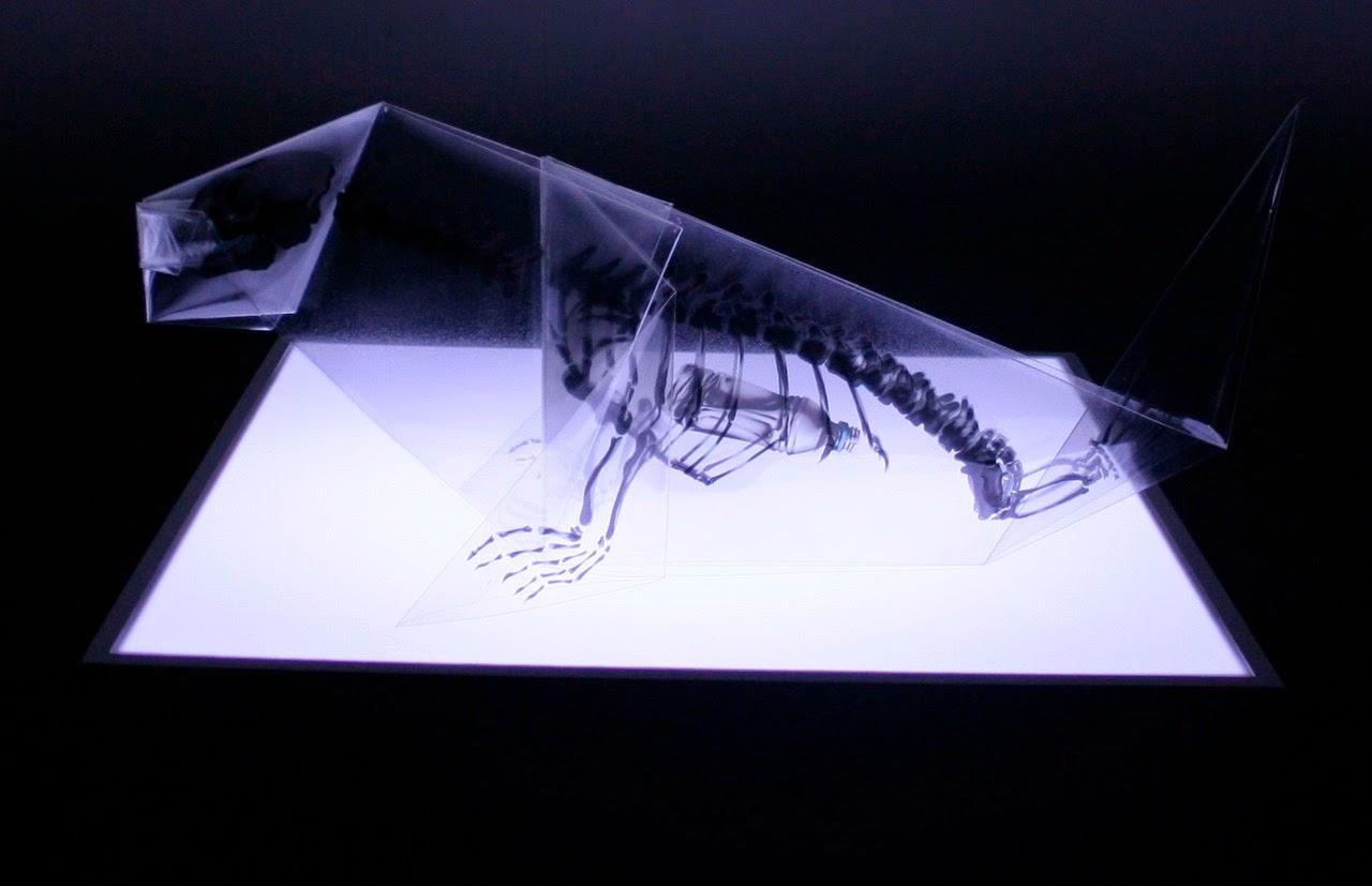 rayonx-origami-07