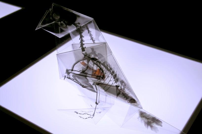 rayonx-origami-08