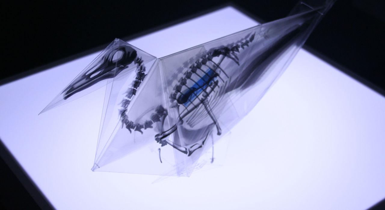 rayonx-origami-09