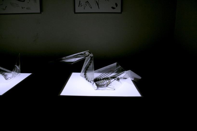 rayonx-origami-11