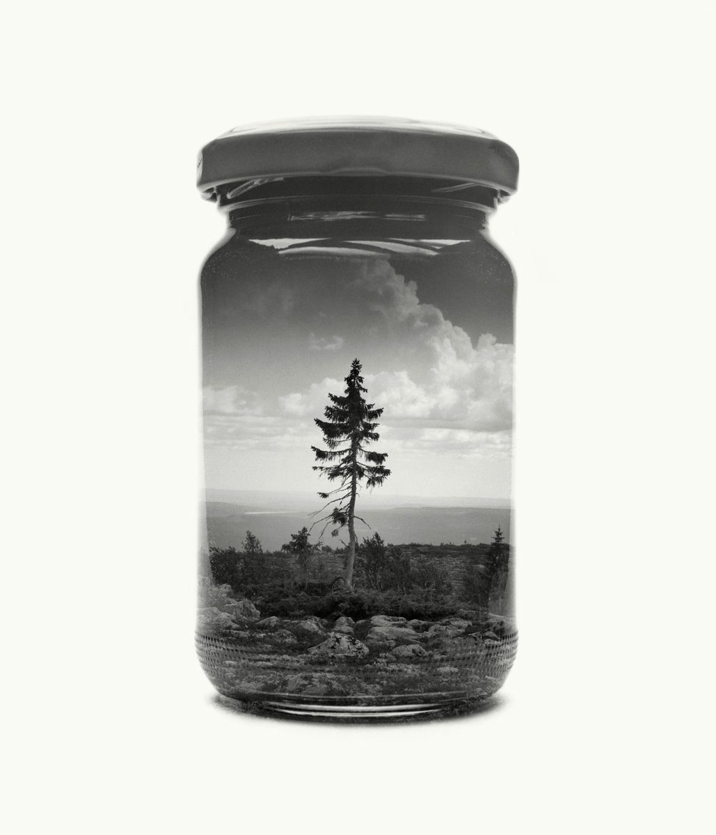 paysage-finlande-bocal-01