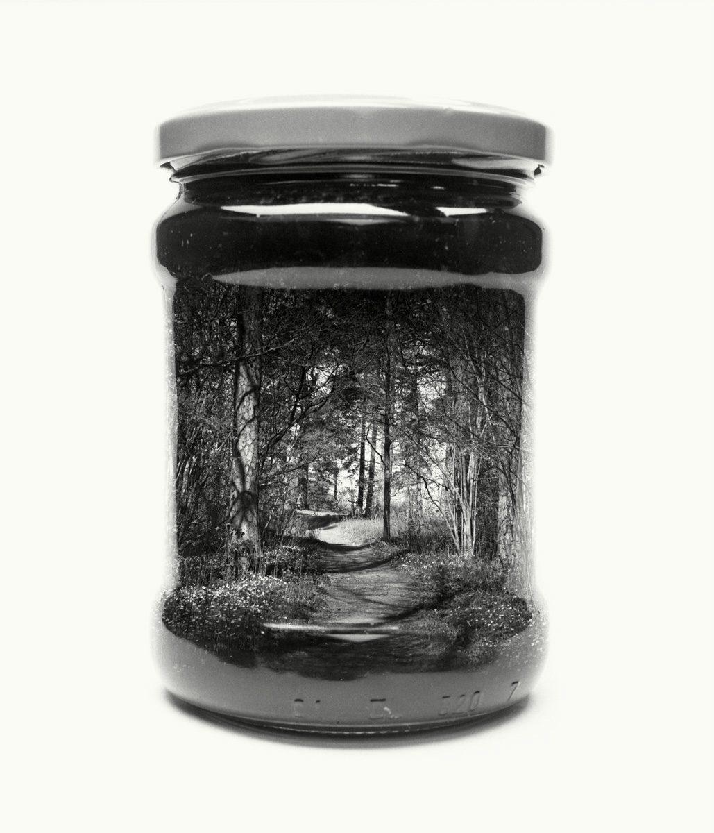 paysage-finlande-bocal-03