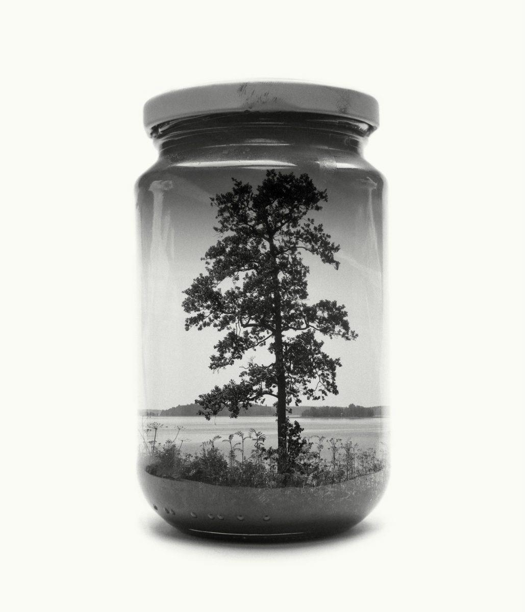 paysage-finlande-bocal-04