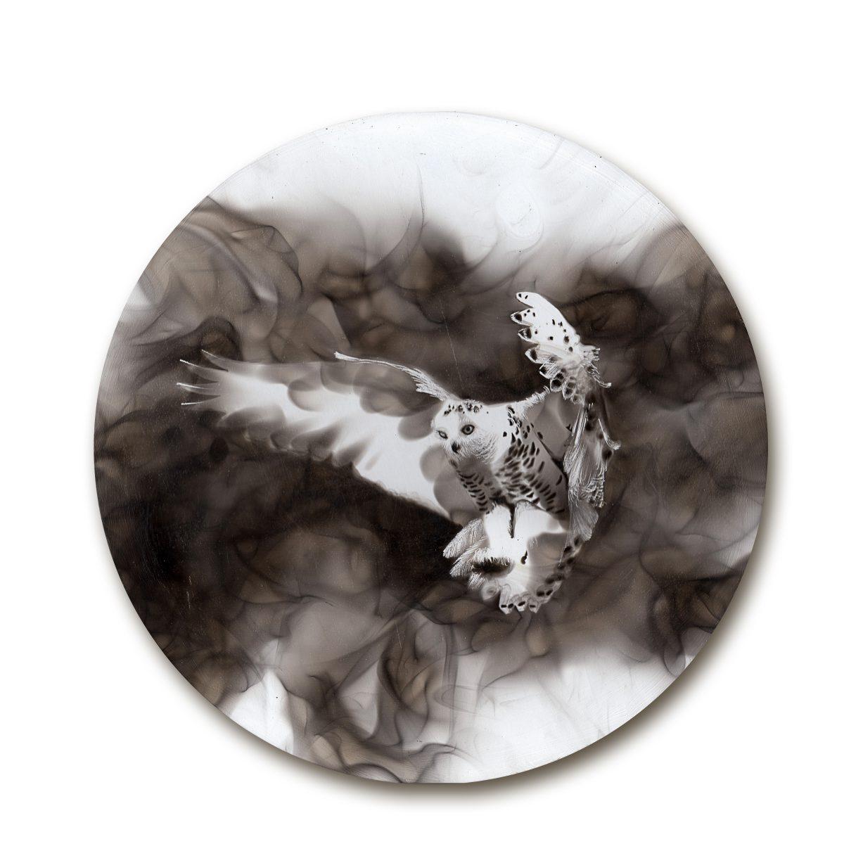 peinture-feu-steven-spazuk-10