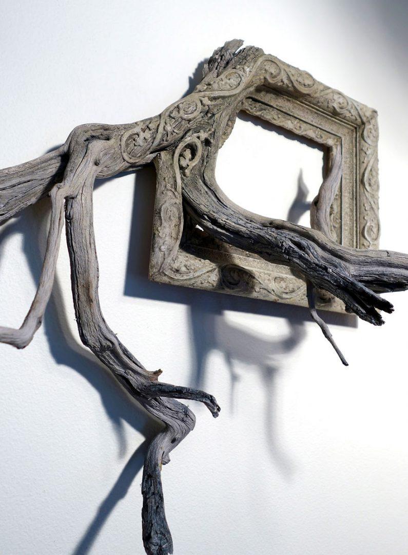 cadre-photo-arbre-branche-04