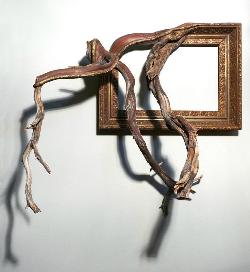 cadre-photo-arbre-branche-06