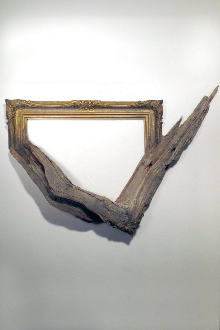 cadre-photo-arbre-branche-08
