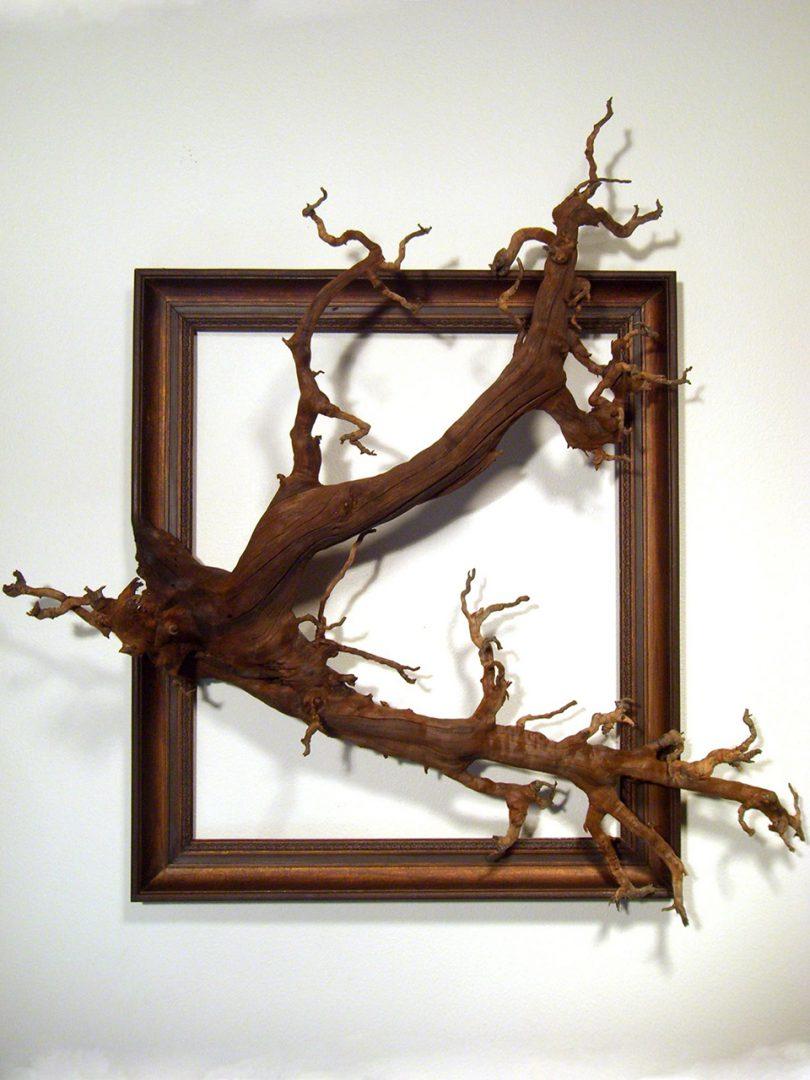 cadre-photo-arbre-branche-12