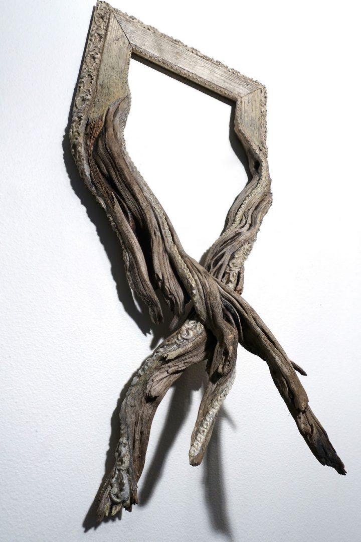 cadre-photo-arbre-branche-13
