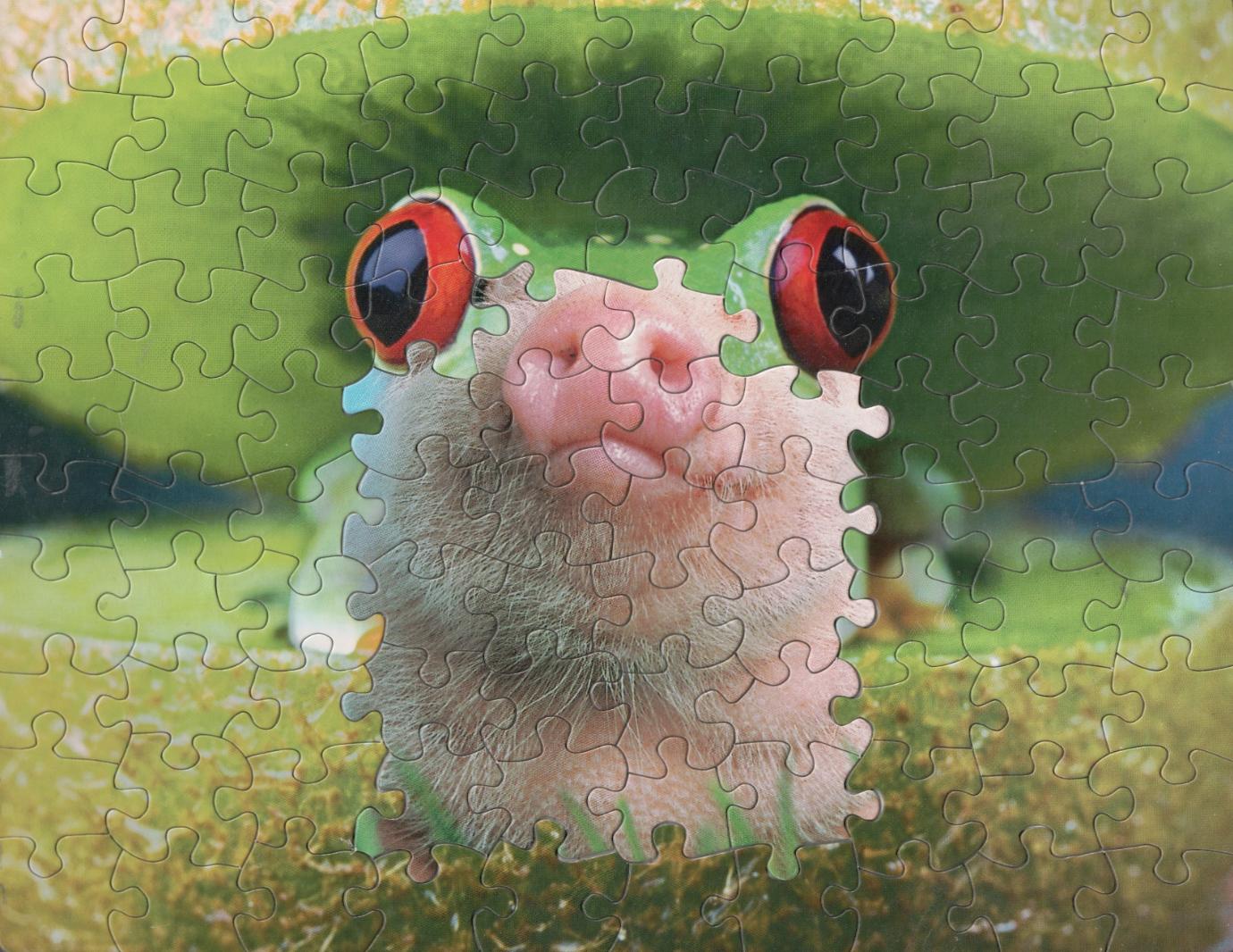 puzzle montage leffet surrealiste des puzzles melanges